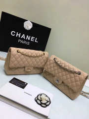 CHANEL 1112 beige 2.55 Calfskin Leather Flap Bag with Gold Hardware - 1