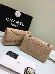 CHANEL 1112 beige 2.55 Calfskin Leather Flap Bag with Gold Hardware - 3