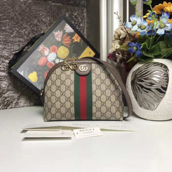 Gucci Ophidia Bag 2628