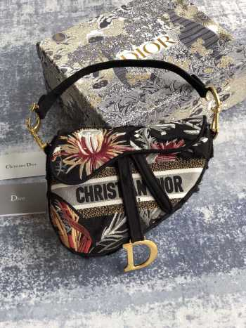 Dior Saddle Bag 001